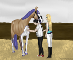 Vet inspection EWS Jumping Competition by RisingAngelss