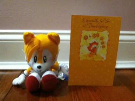 Happy Thanksgiving from Tails the Fox ^_^ by EDVeloso