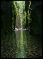 Green Shadow Gorge by MarcAdamus