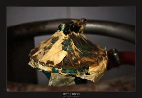 Rust and Decay by lightronin