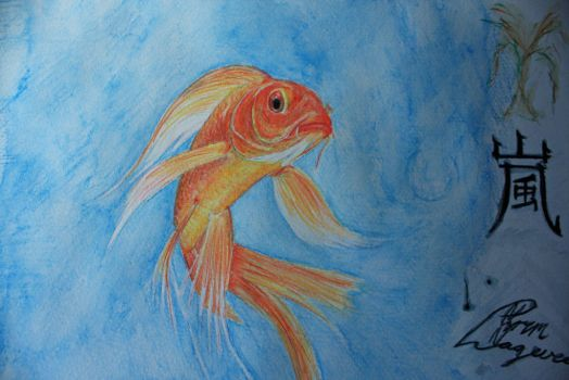 Gold fish by Lageveen