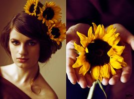 Sunflower I. by LeannaStreignard
