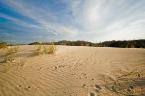Beach Sand Dunes sky stock by ebstock