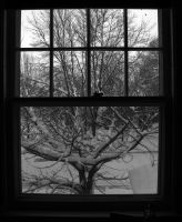 Through the Wintery Window by sinister7showdown