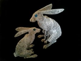 Hare pair 2 by braindeadmystuff