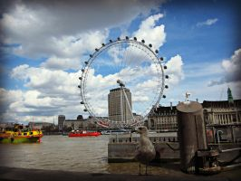 London Eye + Seagull by JackArgetlam