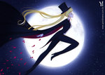 Sailor Moon Tuxedo Kamem by YarickArt