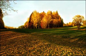 autumn colours  xx by KariLiimatainen