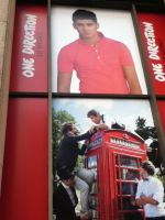 1D World- Zayn by Toadettesupahfan18