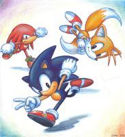 Sonic the Hedgehog and Co by Liris-san