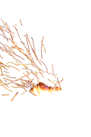 Fire Sparks PNG Stock by BeccaB-323-STOCK