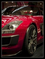 Mercedes SLS by Andso