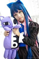 Stocking Anarchy II by KiraHokuten