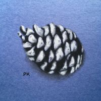 Pinecone // charcoal practice by MajesticPaula