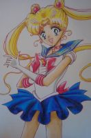 Pretty Guardian Sailor Moon Volume 1 cover by Highway3