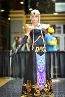 Zelda Cosplay at ACen 2013 by N1k0nSh00ter