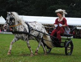 A Lady And Her Pony Cart 03 by ponystock