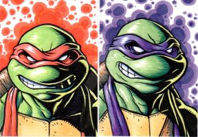 Tmnt-Raph and Donnie by monstrous64