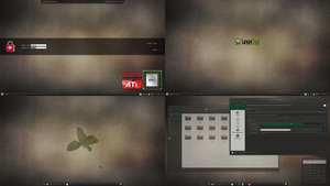 A Linux Mint 13 screenshot (10/20) by jakin0605