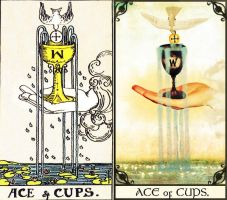 Ace of Cups Comparison by kpep