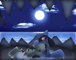 PMD, Night At The Sharpedo Bluff... by NemiruTami