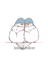 Snuggle Birds by bensigas
