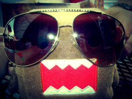 Domo Rocks the Aviators by bec312