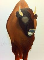 Senior Show Bison WIP by deppfan85