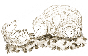 Sleeping hedgehogs by Mutabi