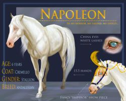 Napoleon Character Sheet by Ospreyghost13