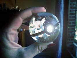 The Pokeball of Wartortle