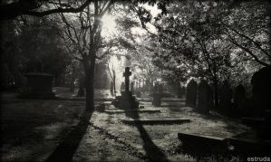 All Is Quiet In The Cemetery by Estruda