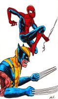 Spidey And Wolverine by alexhdunn
