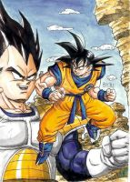 Goku Vs Vegeta 2 by BK-81
