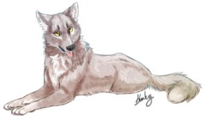 Speed Art Wolf by Stalcry