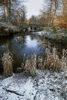 Minnowburn Winter 2010 I by Gerard1972