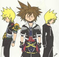Request- Roxas, Sora, and Ven by WolfRaver13