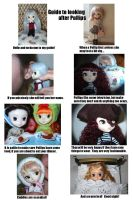 Guide to looking after Pullips by ErebusRed