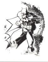Nudder Batman by rantz