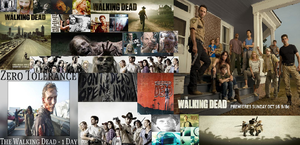The Walking Dead wallpaper by fireandwaterqueen