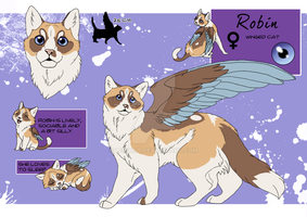 ROBIN_Character sheet by LewKat