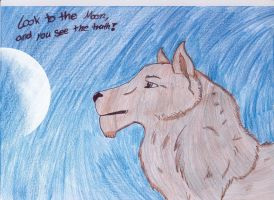 The wolf by Schania