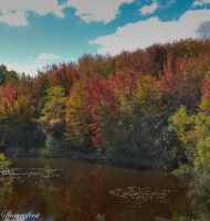 Glory of Fall 1 by Brian-B-Photography