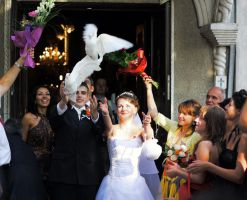 wedding and pigeons by alamic-marius