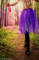 Enter The Forest by RomanceXGirl