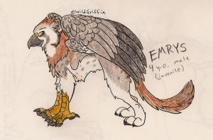 Emrys by WildGriffin