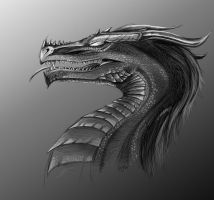 Dragonface by Bephza