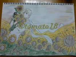 Hetalia: Sunflower field by tomato18