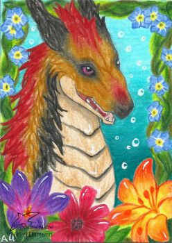 Carribean Dream (ACEO) by Woodswallow