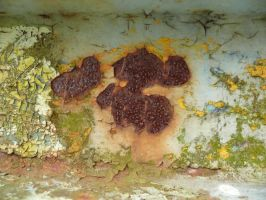 rust_texture_7 by pebe1234